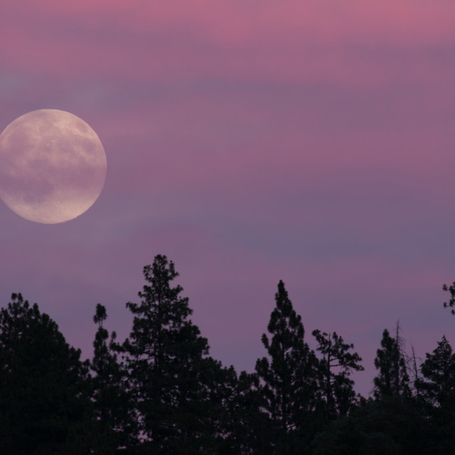 """The full moon of August 2014 is known as a super moon."" stock image"