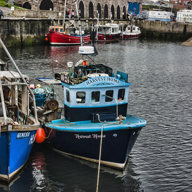 """The Harbour Seahouses"" stock image"