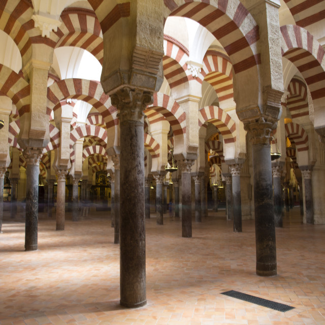 """Columns of La Mezquita Cathedral (Cordoba Mosque)"" stock image"