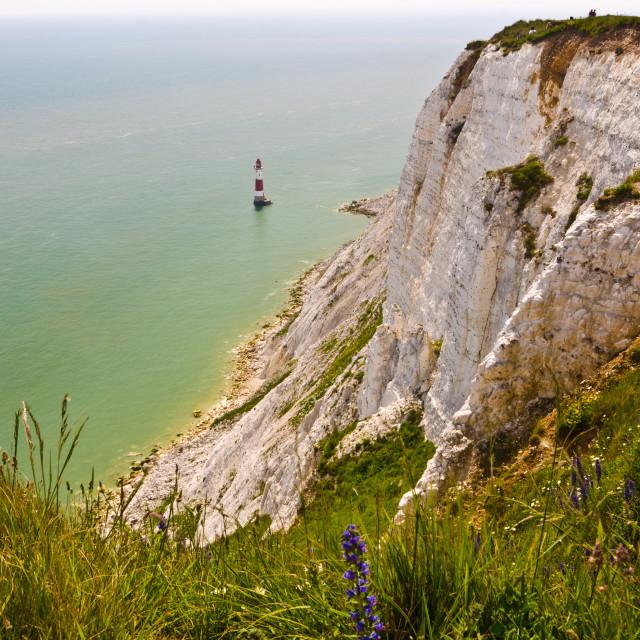"""Beachy Head Lighthouse (4)"" stock image"