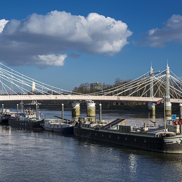 """Albert Bridge, London"" stock image"