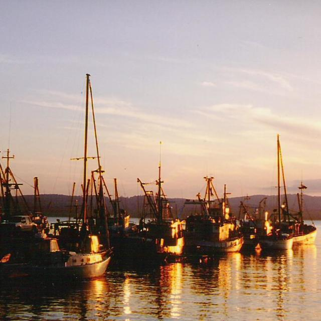 """Fishing boats at sunset"" stock image"