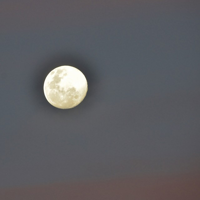 """Super Moon"" stock image"