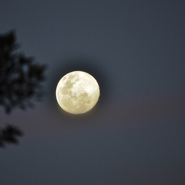 """Super Moon 2"" stock image"