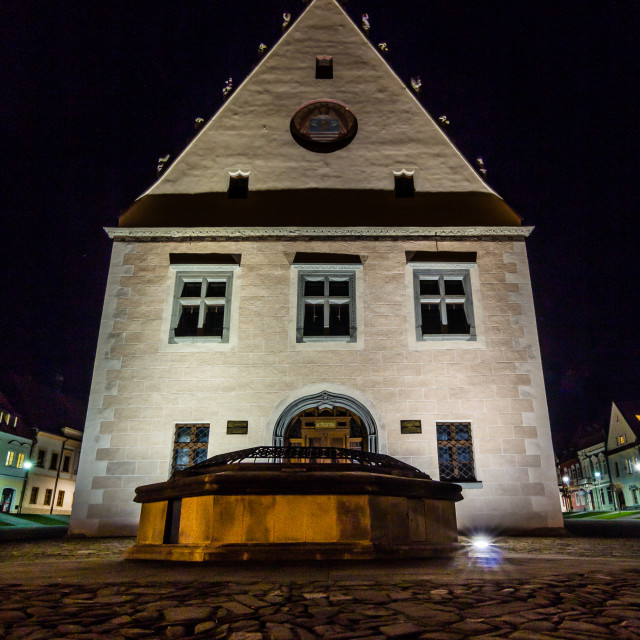 """""""The Town Hall in Bardejov"""" stock image"""