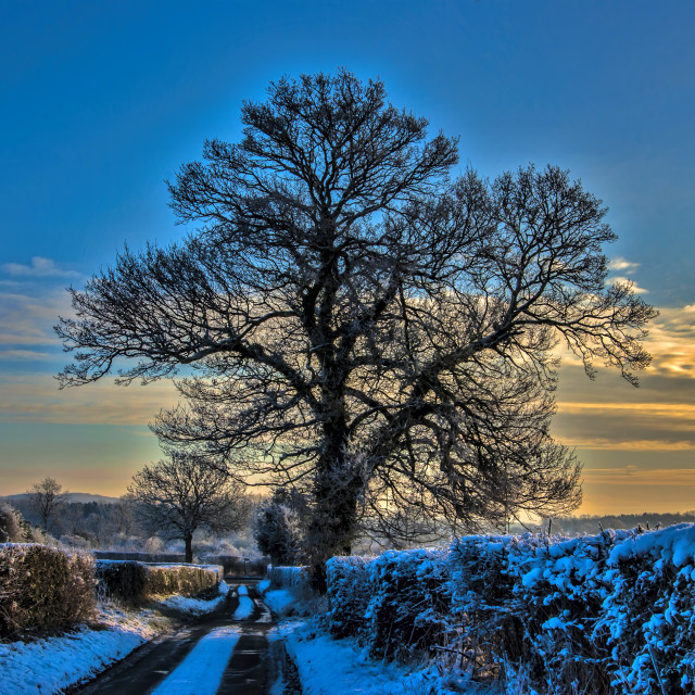 """Winters Afternoon Sunset"" stock image"