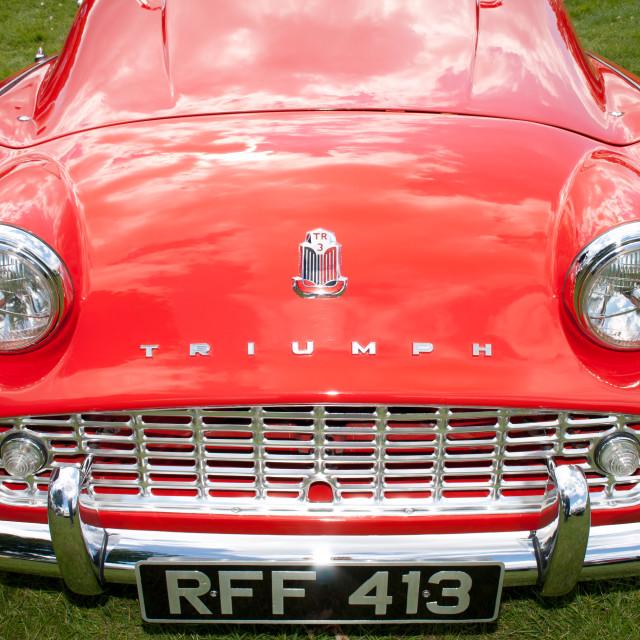 """Triumph Smile"" stock image"