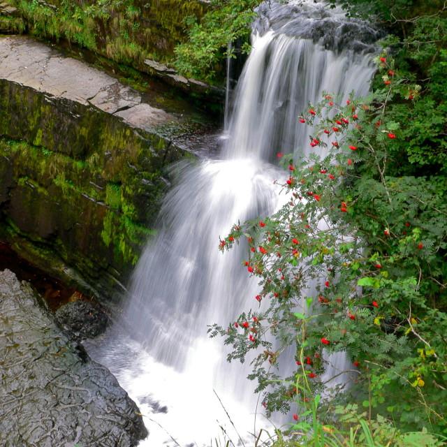"""Pontneddfechan waterfall, Wales"" stock image"