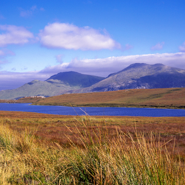 """""""Loch, moor and mountain"""" stock image"""