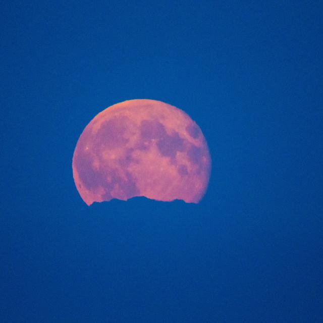 """Super Moon 11/08/14"" stock image"