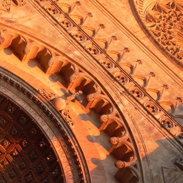 """Palma Cathedral detail"" stock image"