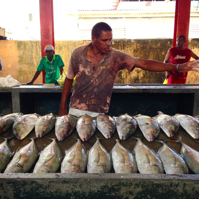 """Fish Market, Victoria, Mahe in the Seychelles"" stock image"