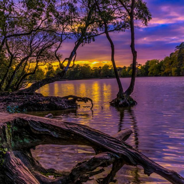 """Black park lake view"" stock image"