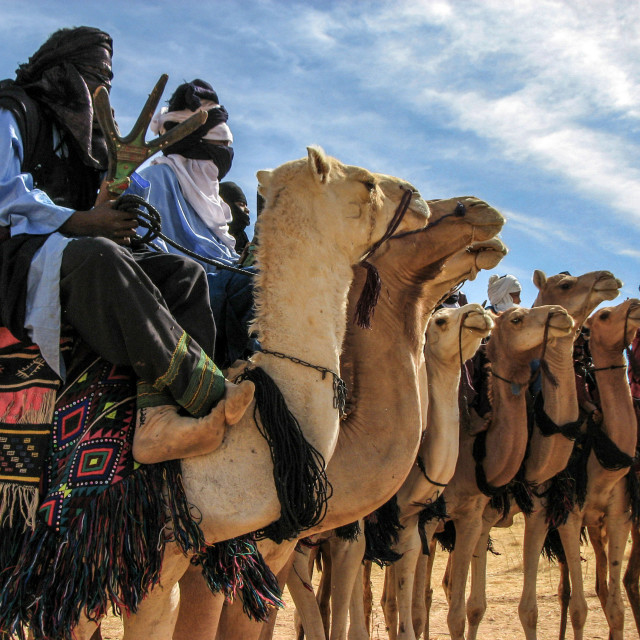 """Tuareg Warriors Before the Coup (Niger)"" stock image"