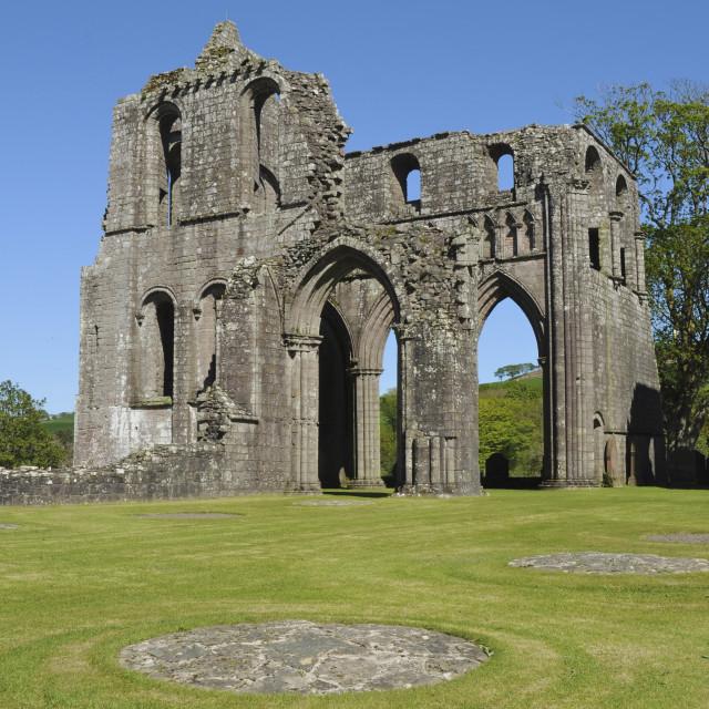 """Dundrennan Abbey, Scotland"" stock image"