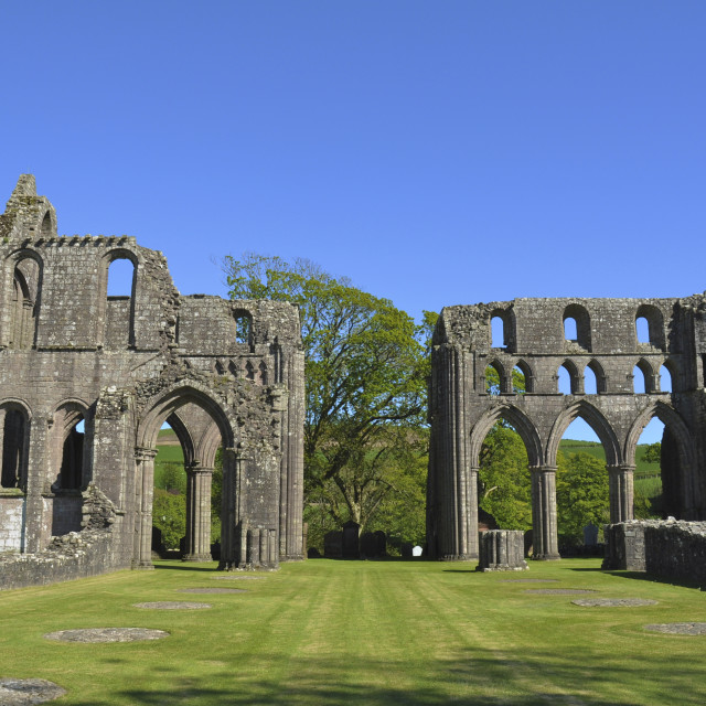 """Dundrennan Abbey, Scotland"" stock image"
