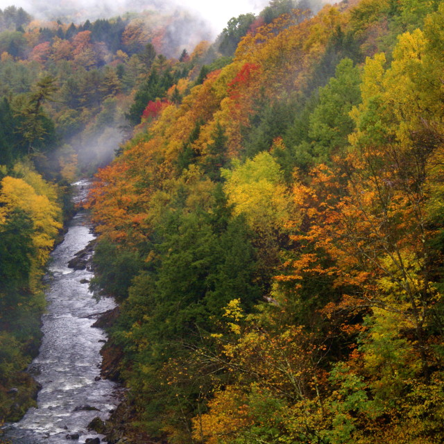"""""""Quechee Gorge in the Fall"""" stock image"""