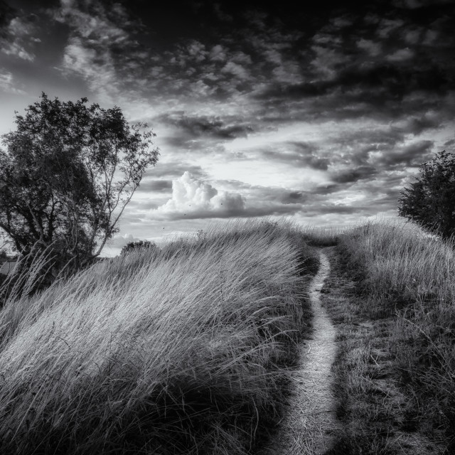 """Old Path, White Clouds"" stock image"