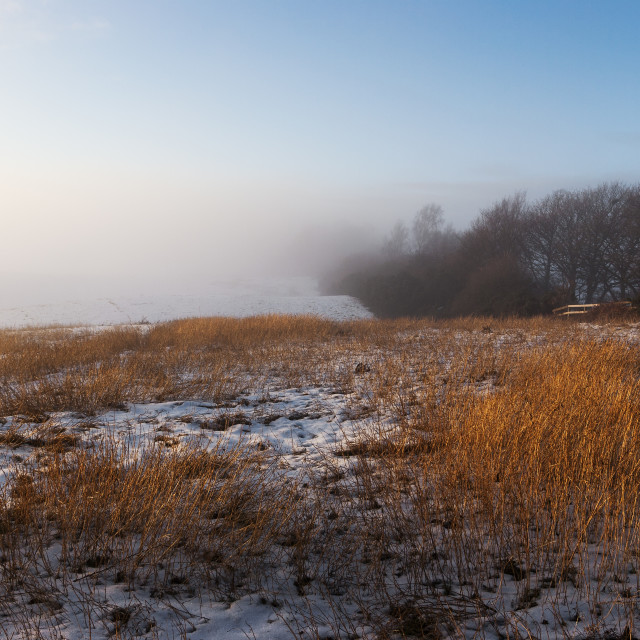 """""""Mist and snow"""" stock image"""