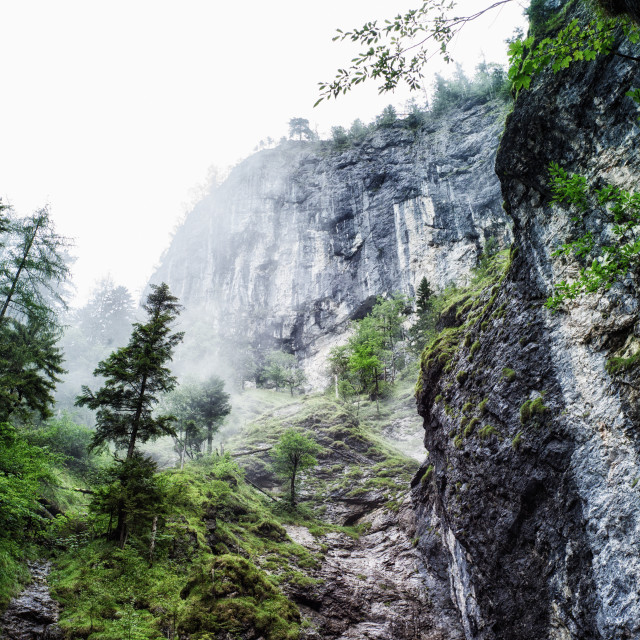 """Misty mountain"" stock image"