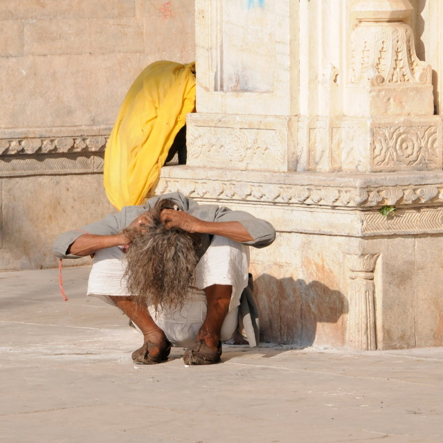 """Itchy head in Udaipur"" stock image"