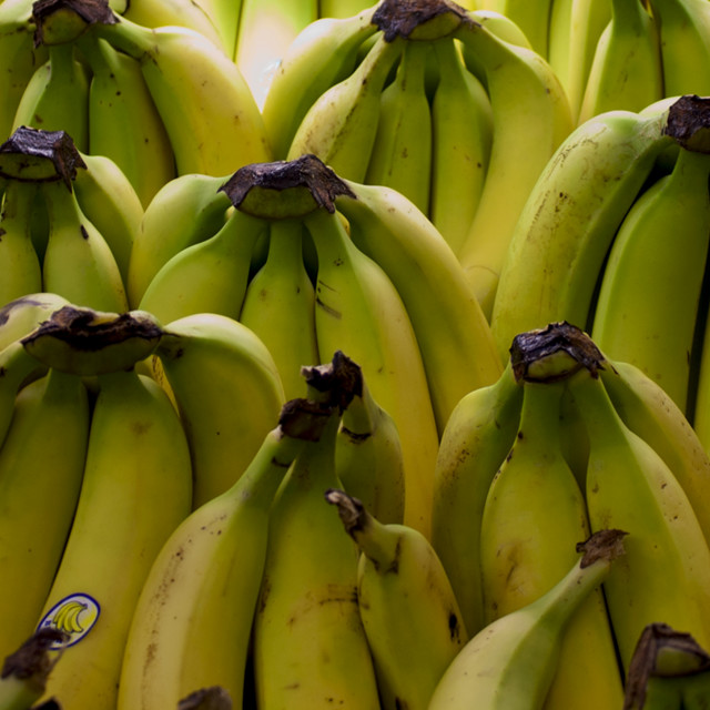 """Front Line (Banana Blitz)"" stock image"