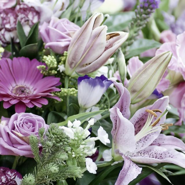 """Bleach them Flowers"" stock image"