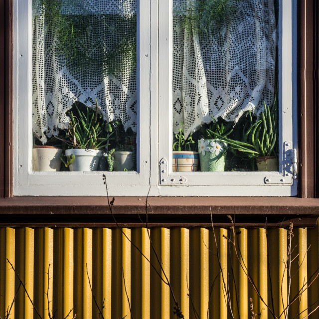 """Reykjavik window"" stock image"