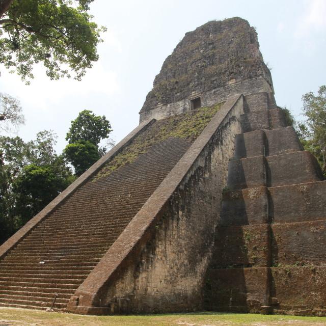 """""""Tikal Temple"""" stock image"""
