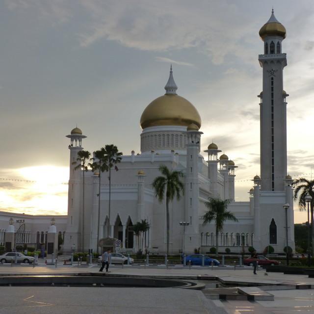 """""""Sultan Omar Ali Saifuddin Mosque"""" stock image"""