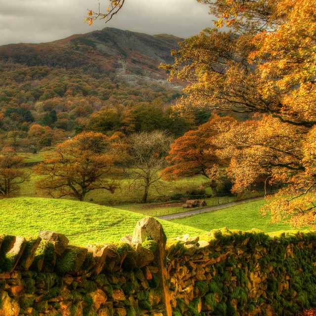 """Langdales, Lake District"" stock image"