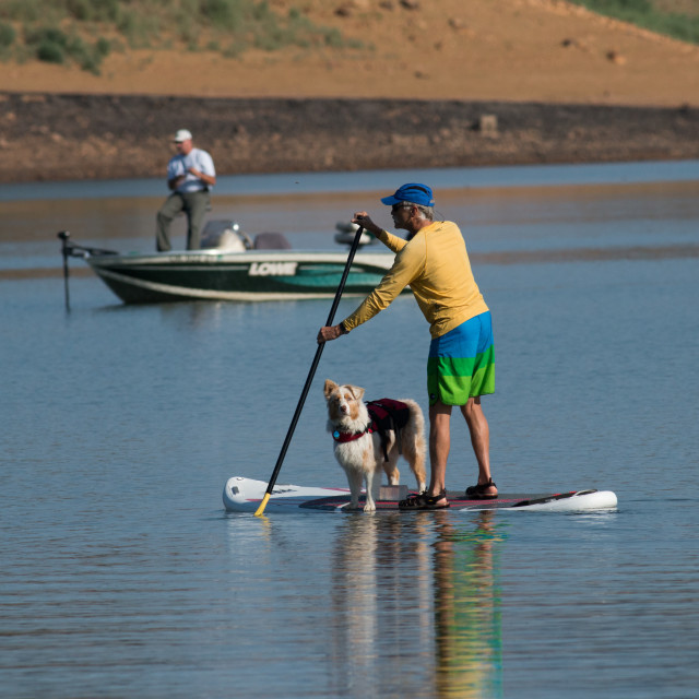 """Stand up paddle boarder paddles with his dog."" stock image"