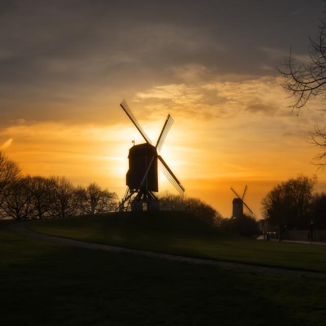 """Windmills of Bruge"" stock image"