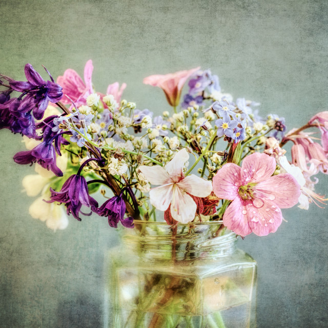 """Jam Jar Flowers I"" stock image"