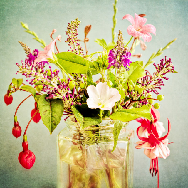 """Jam Jar Flowers IV"" stock image"