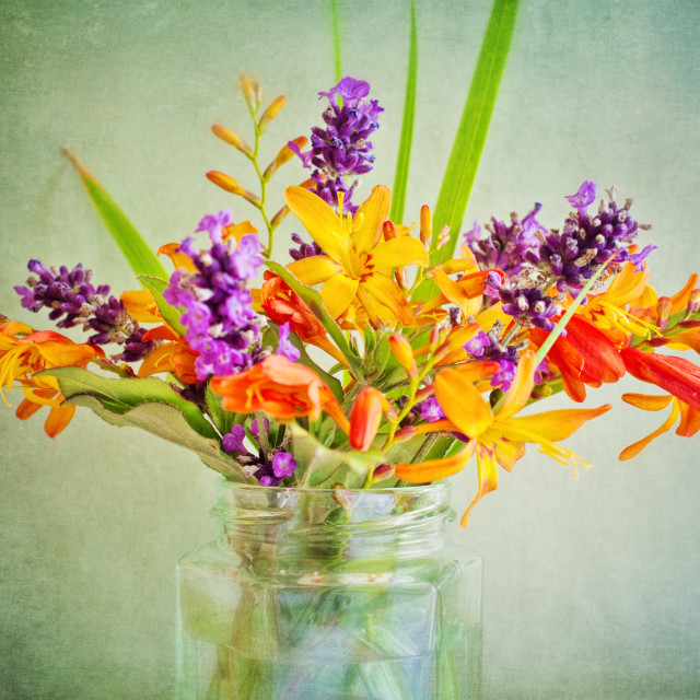 """Jam Jar Flowers III"" stock image"