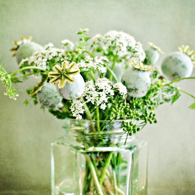 """Jam Jar Flowers II"" stock image"