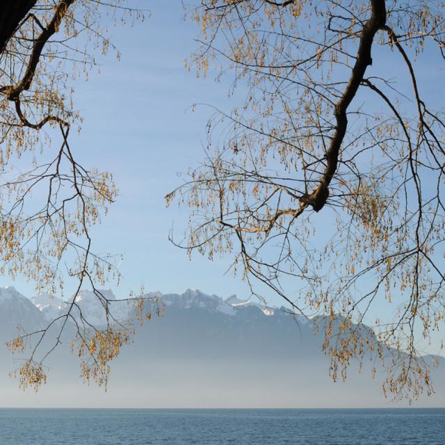 """Winter view Lake Geneva"" stock image"