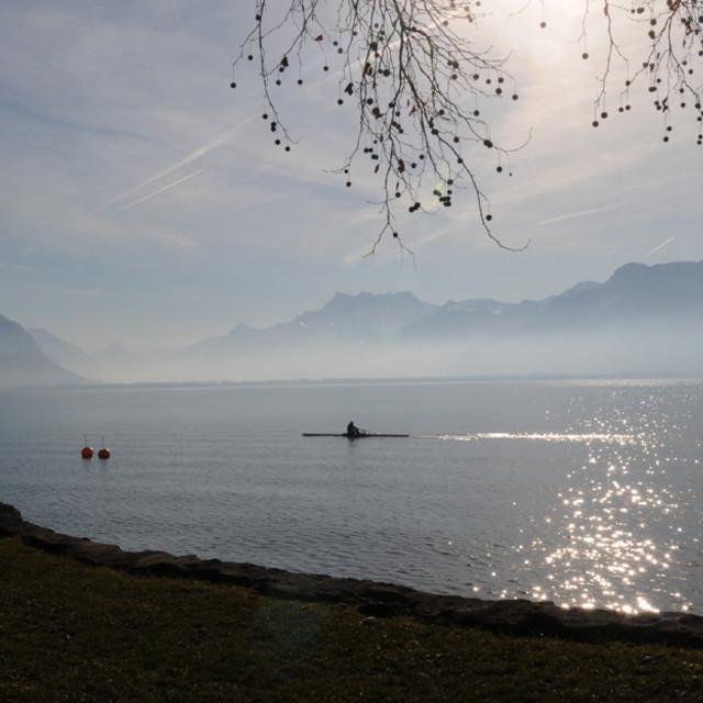 """""""Rowing on Lake Geneva"""" stock image"""