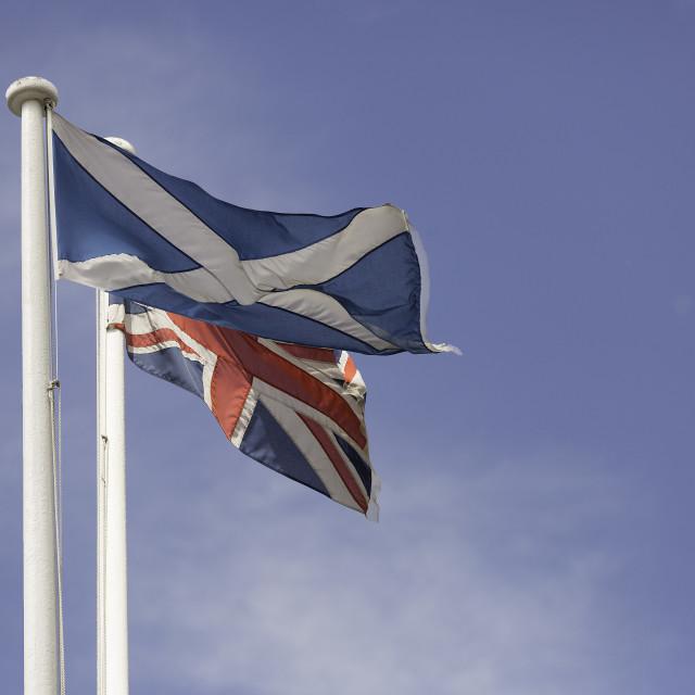 """""""Scottish and Union Flag"""" stock image"""