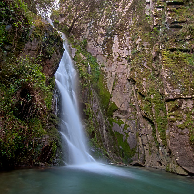 """""""Waterfall in deep forest"""" stock image"""