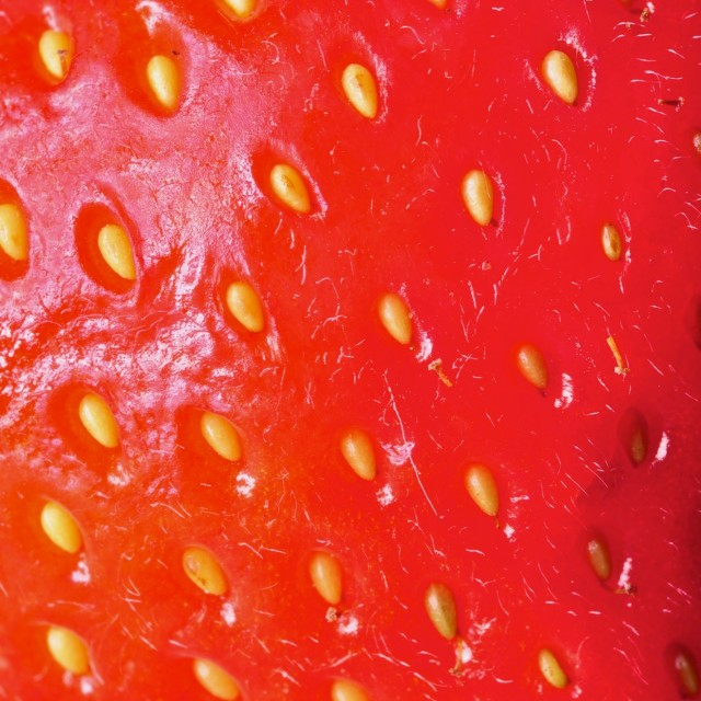 """Strawberry"" stock image"