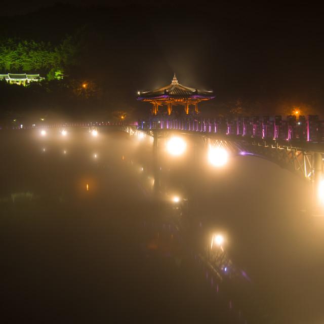 """Bridge Night View"" stock image"