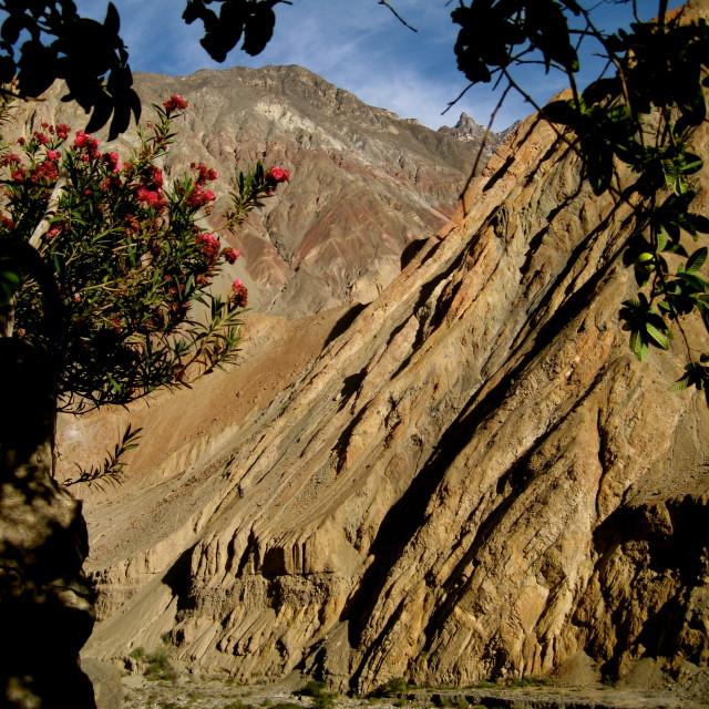"""Cotahuasi Canyon, Peru"" stock image"