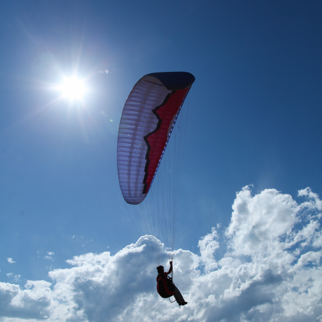 """Paraglider takes off on beautiful sunny morning."" stock image"