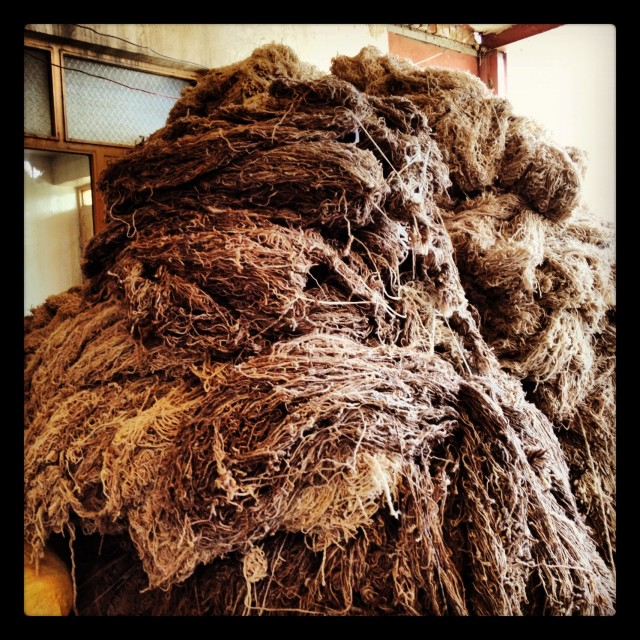 """Wool ready to be spun"" stock image"