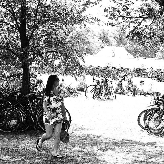 """""""Forest of bikes"""" stock image"""
