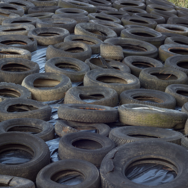 """""""Tyres on silage heap"""" stock image"""