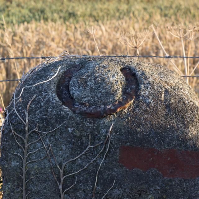 """Lucky horseshoe"" stock image"