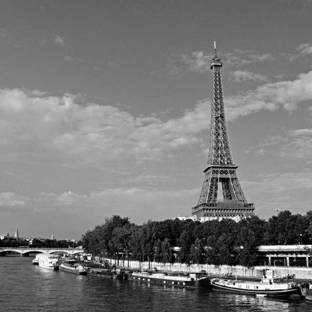 """""""Eiffel Tower, black and white (2)"""" stock image"""